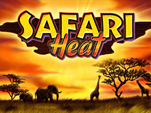 Safari Heat в казино Вулкан Гранд